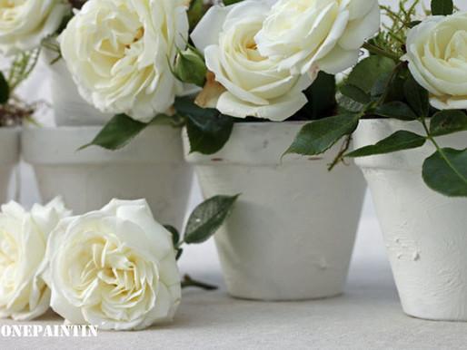 Besondere Blumentöpfe zum Valentinstag