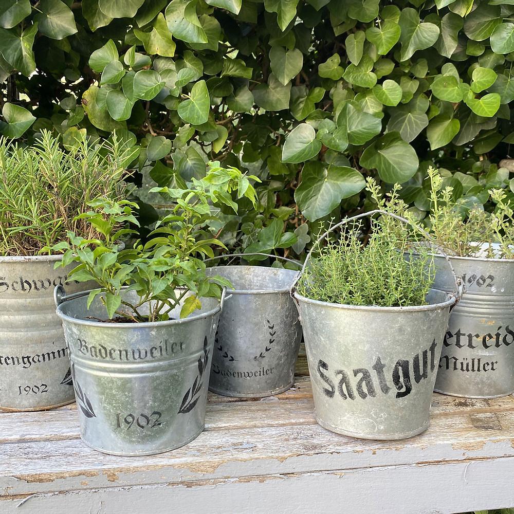 Blumentopf für den Garten verzieren