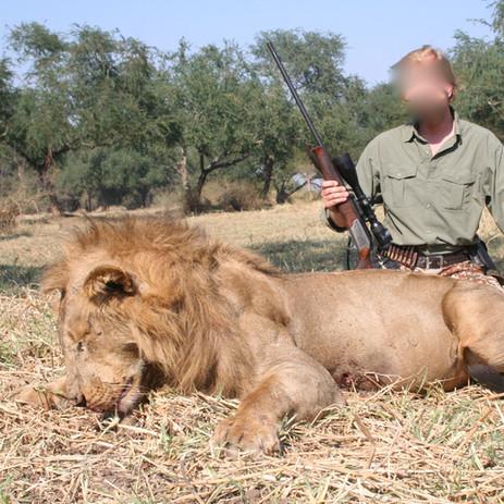 2010 Lion.JPG