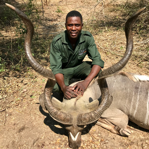 Kudu2.jpg