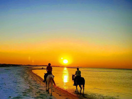 sunset horseback ride.jpg