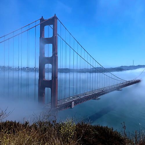 San Francisco/Winery, CA