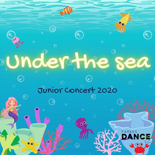 Junior Concert - Under the Sea USB