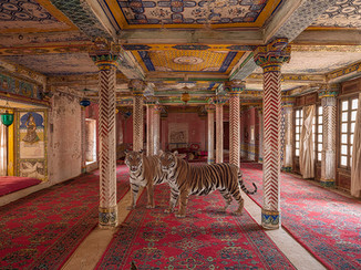 Tigers in the palace 2.jpg