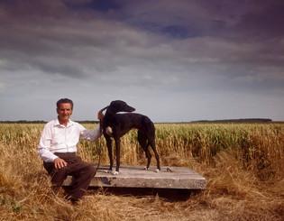 greyhound 1.jpg
