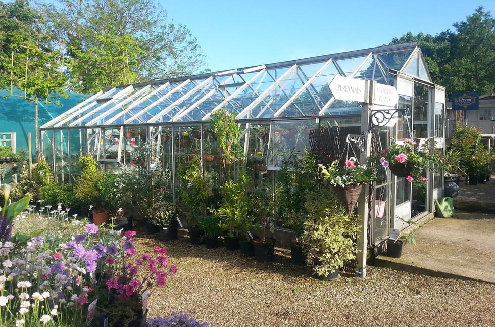 green house garden centre