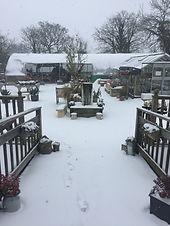 Garden Centre - Snow!!!.JPG