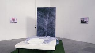 Vibes Exhibition (zoom).mp4