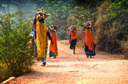 The Women of Ranthambore