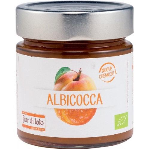 Composta all' Albicocca