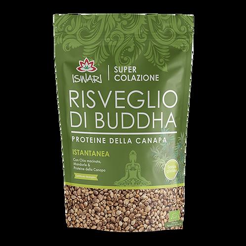 Risveglio di Buddha Canapa