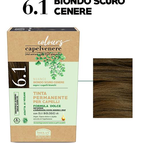 Tinta Capelli 6.1 Biondo Scuro Cenere