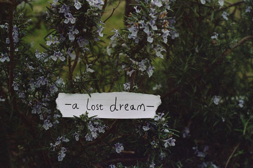-a lost dream-