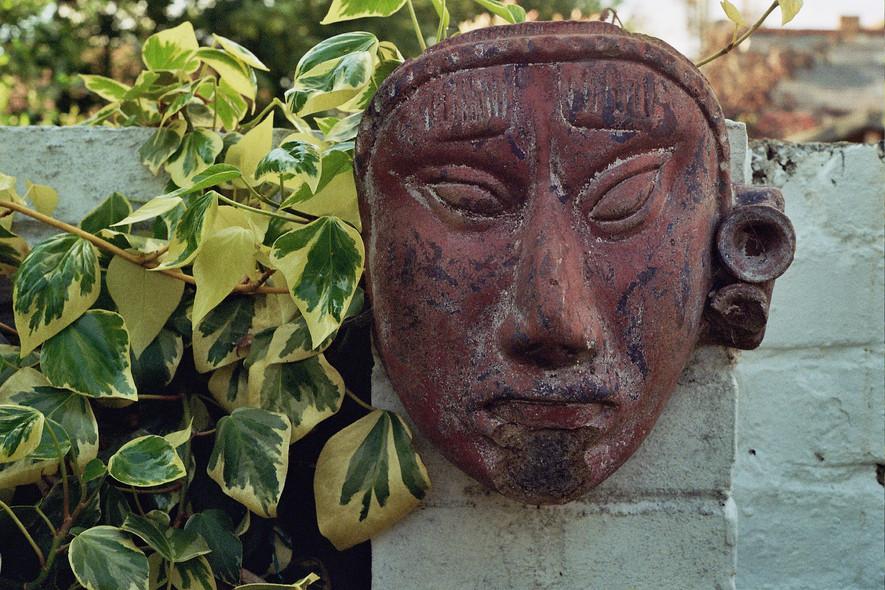-garden face-