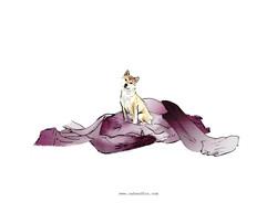 zak and fox custom ombre