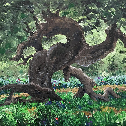 LP/ Dragon Tree • 11 by 11 inches