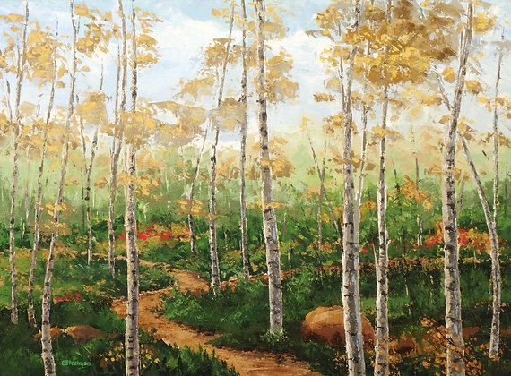 LP/ Trails thru the Aspens • 16 by 12 inches