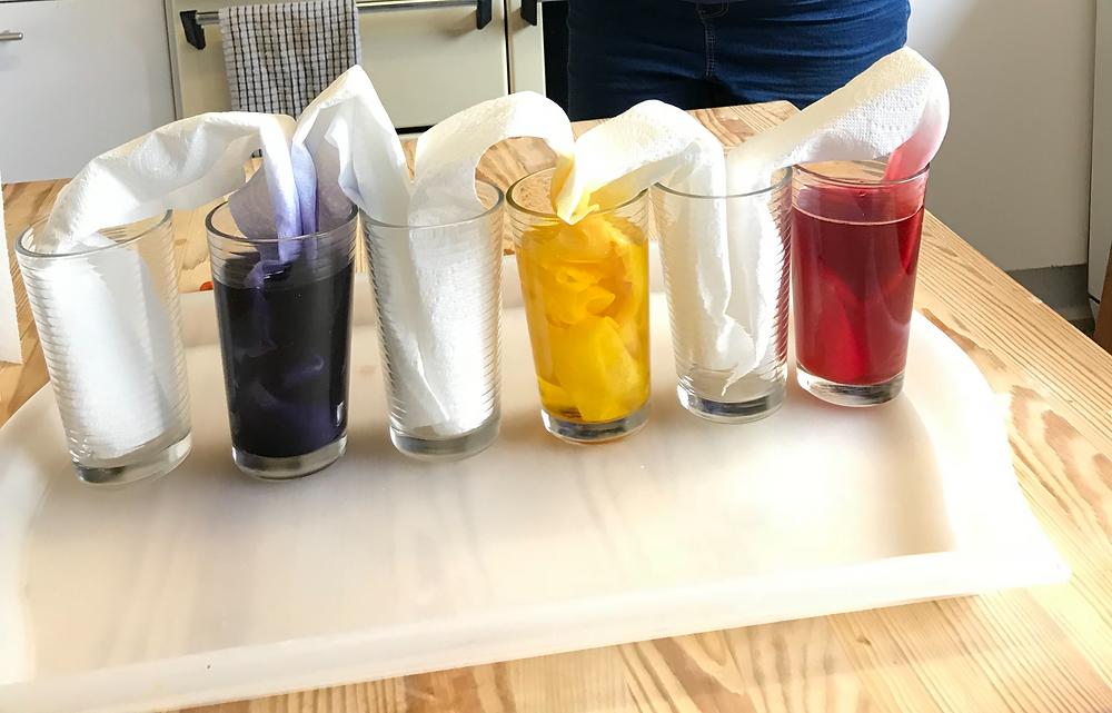 Adding kitchen paper to the glasses