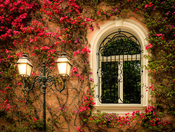 Window w/flowers