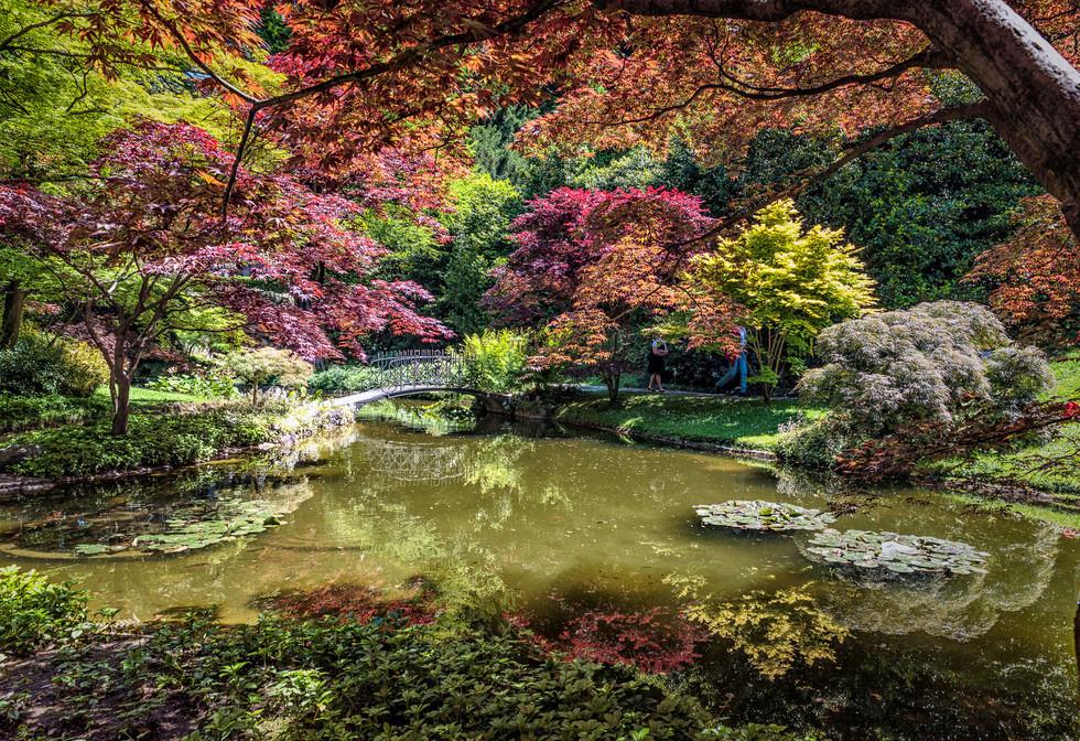 Giardini di Villa Melzi Gardens