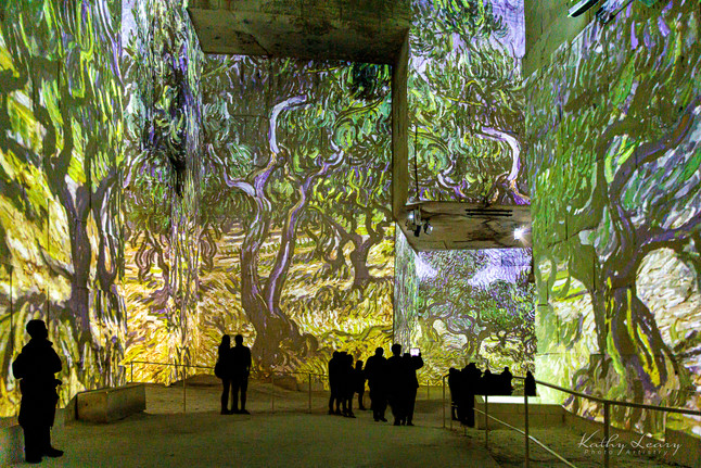 Van Gogh Exhibit