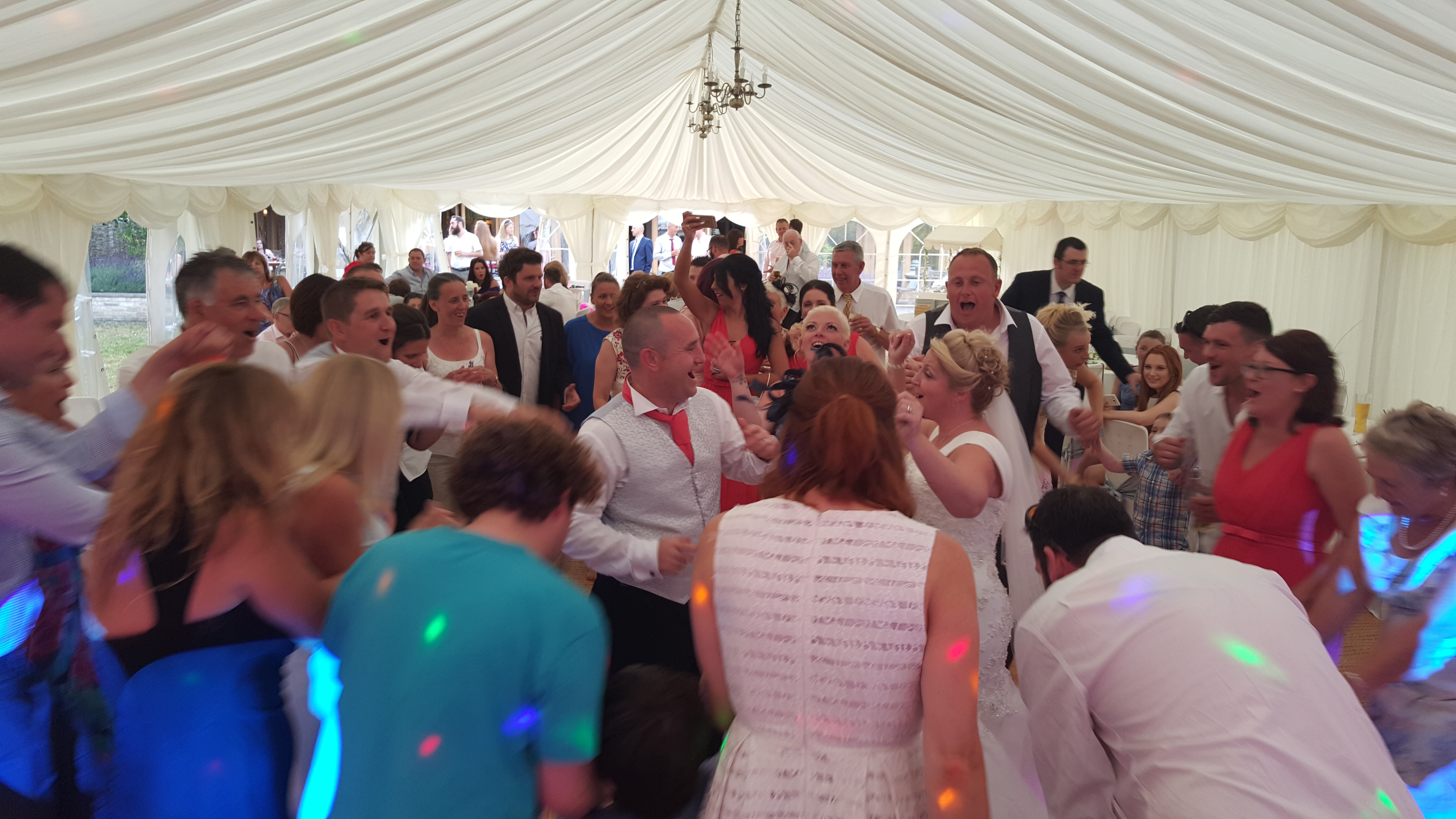 Large White 2disco at Elveden Inn