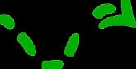 flecha1 verde copy.png