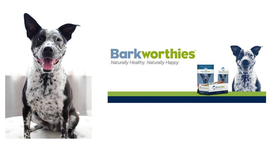 Jackson is the Ambassador for Barkworthies Branding