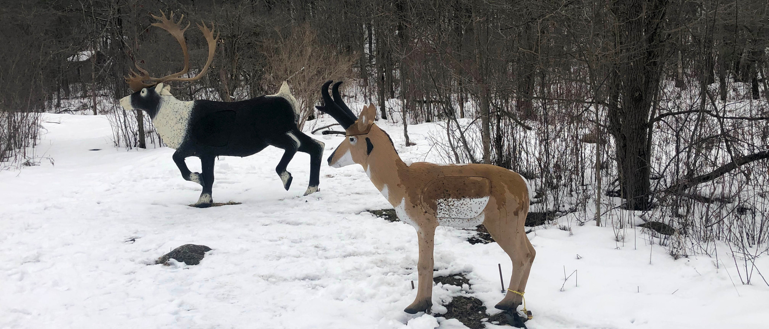 Caribou and Pronghorn in Winter.jpg