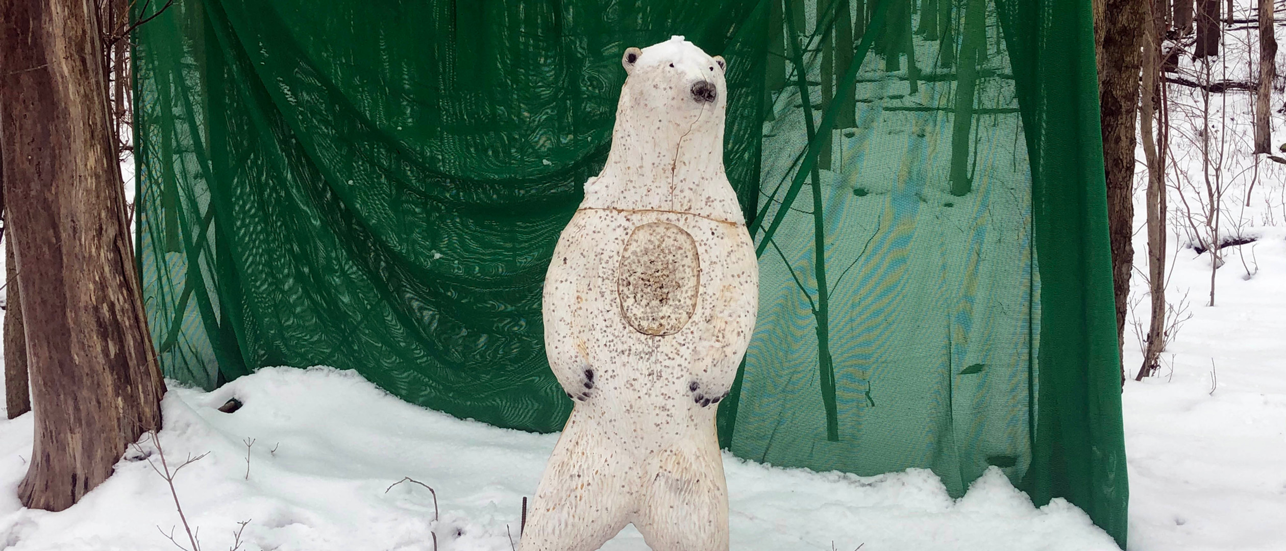 Polar Bear in Winter.jpg