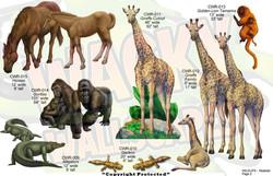 Wildlife Realistic Animals