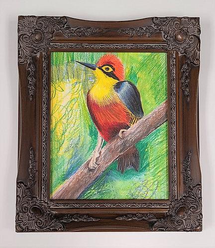 Red Bird Drawing