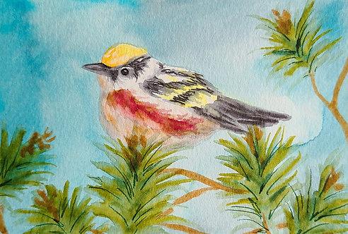 Ink Wash Painting: Bird