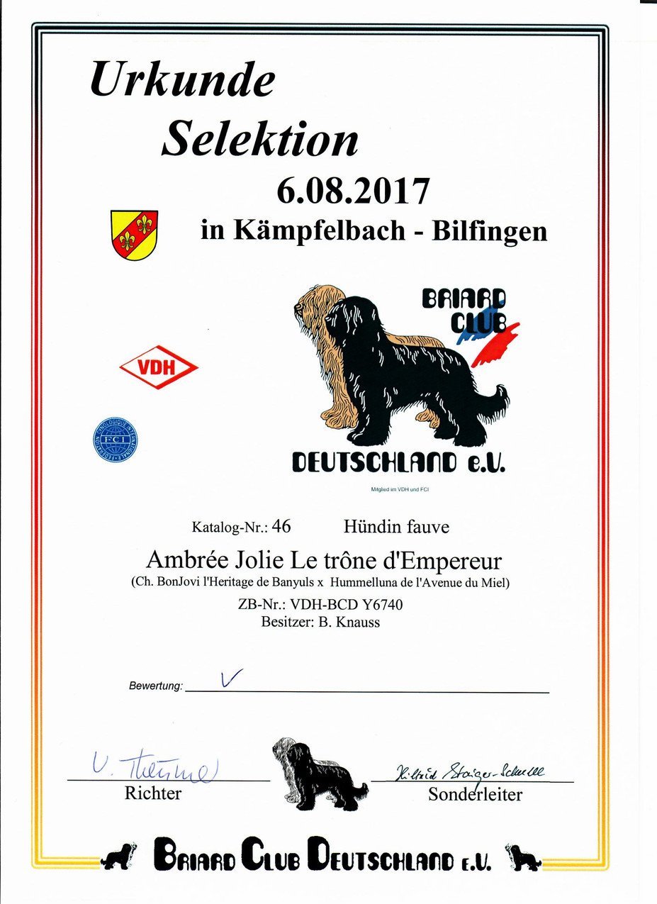 Selektion Kampfelbach 2017 Richterbericht 1