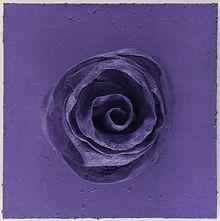Rose lila.jpg