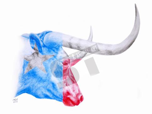 longhorn texas