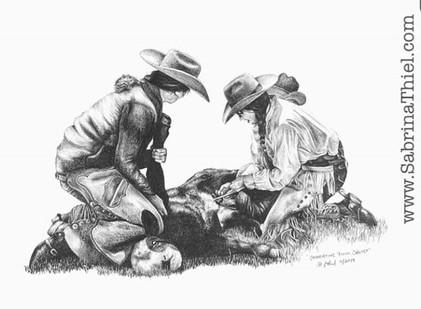 Castrating Bull Calves