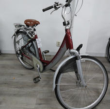 E-bike Sparta ION GL 48
