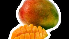 Comiendo y cocinando con mangos