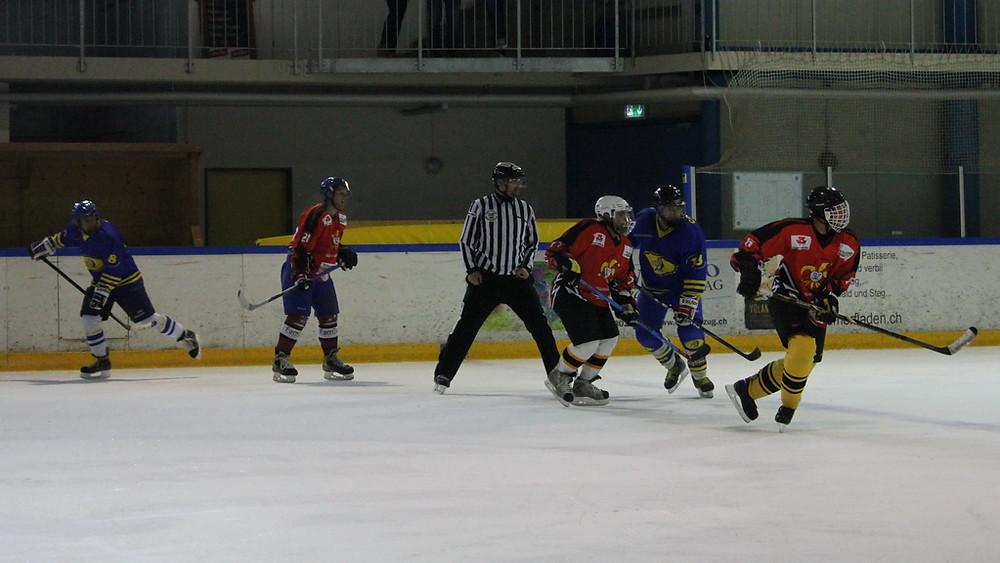 HC-Zurich-Dolphins-News-2014-11-16-1.JPG