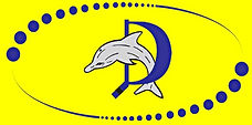 HC-Zuerich-Dolphins-Logo.jpg