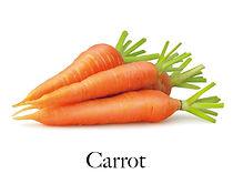 carrot_f.jpg