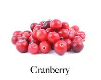 cranberry_f.jpg