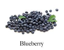 blueberry_f2.jpg