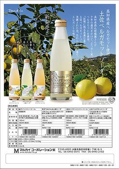 Dean&Co. 高知県産クラフトソーダちらし4種 INR61118-61100