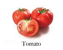 tomato_f.jpg