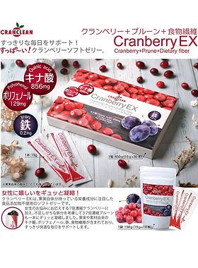 Cranberry EX_ちらし02_0526.jpg