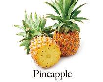 pine_f.jpg