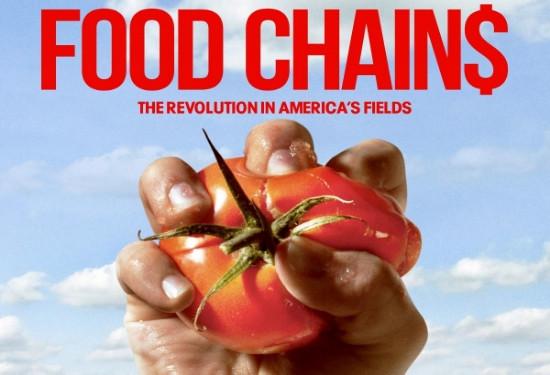 food_chains.jpg