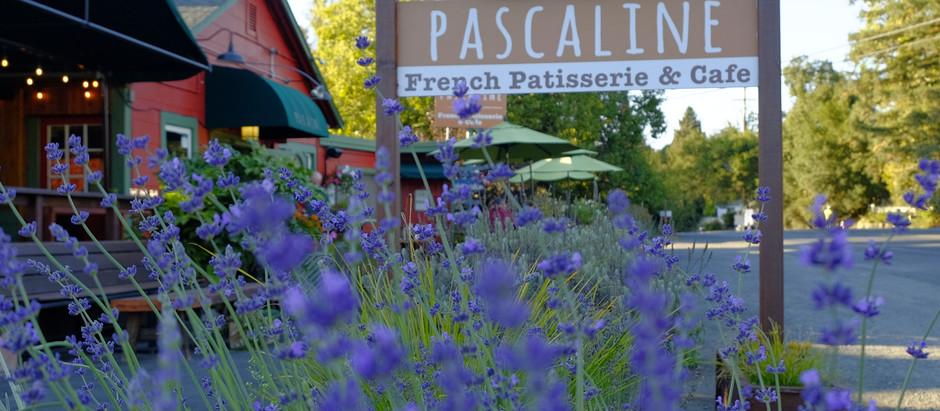 From Pastries to Pop-Ups: Pascaline Patisserie & Cafe